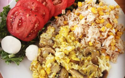Breakfast Plate for injured – Eggs, Mashrooms, Tuna, Rice and Hummus Combo!
